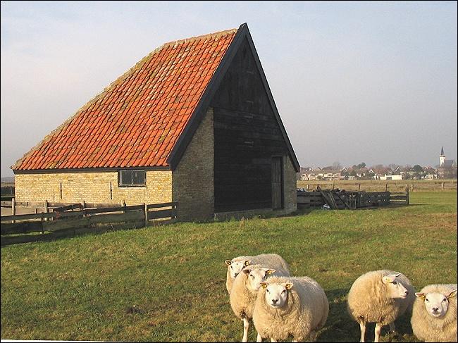 Stolpweg 20 Den Hoorn Schapenboet